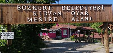 <center> Bozkurt'ta </center><center><font color='blue'> RIDVAN OYAR MESİRE ALANI </font></center>