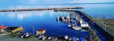 <center> Türkeli Limanı Ağzında Kum Birikintisi </center><center><font color='blue'> TEKNELER LİMANA GİREMİYOR </font></center>