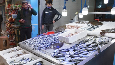 <center> Sinop: </center><center><font color='blue'> ÇİNEKOP 40; BARBUN-MEZGİT 30; HAMSİ 10 TL </font></center>