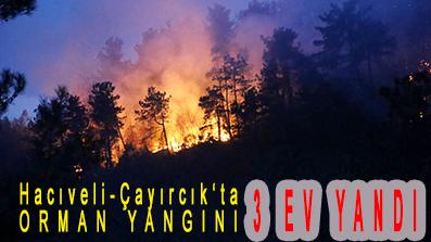 <center> Hacıveli-Çayırcık'ta ORMAN YANGINI </center><center><font color='blue'>3 EV YANDI </font></center>