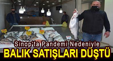 <center> Sinop'ta Pandemi Nedeniyle </center><center><font color='blue'> BALIK SATIŞLARI DÜŞTÜ </font></center>