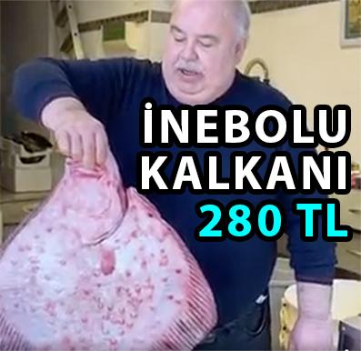 İNEBOLU KALKANI 280 TL