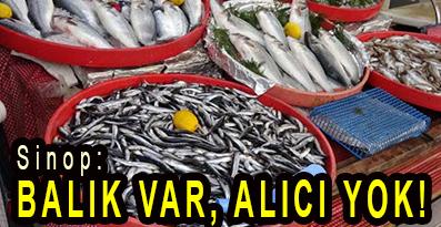 <center> Sinop: </center><center><font color='blue'> BALIK VAR, ALICI YOK! </font></center>