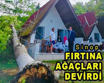 <center> Sinop: </center><center><font color='blue'> FIRTINA AĞAÇLARI DEVİRDİ </font></center>
